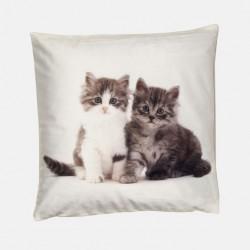 Poduszka dekoracyjna 40x40 cm Dwa Kociaki